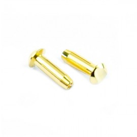 Hi Amper Euro Connector (Large 4mm) Male 2pcs.