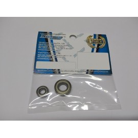FLETA ZX8 1/8th Motor Bearing Set (FR)