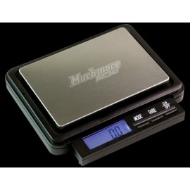 Professional Pocket Scale (weight checker 2,000 Grams).