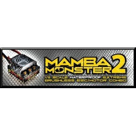 Mamba Monster 2 1:8TH 25V EXTREME CAR ESC WATERPROOF WITH 2200kv motor