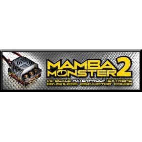 Mamba Monster 2 1:8TH 25V...