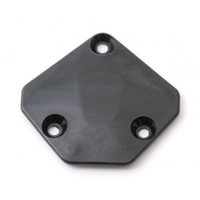 Chassis Gear Cover, 55T (in...