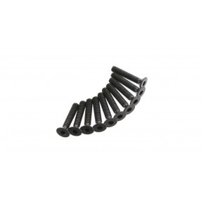 Flat Head Screw 3x16mm (10)...