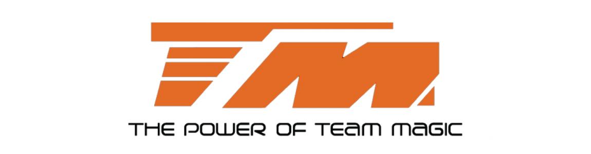 Recambios Team Magic